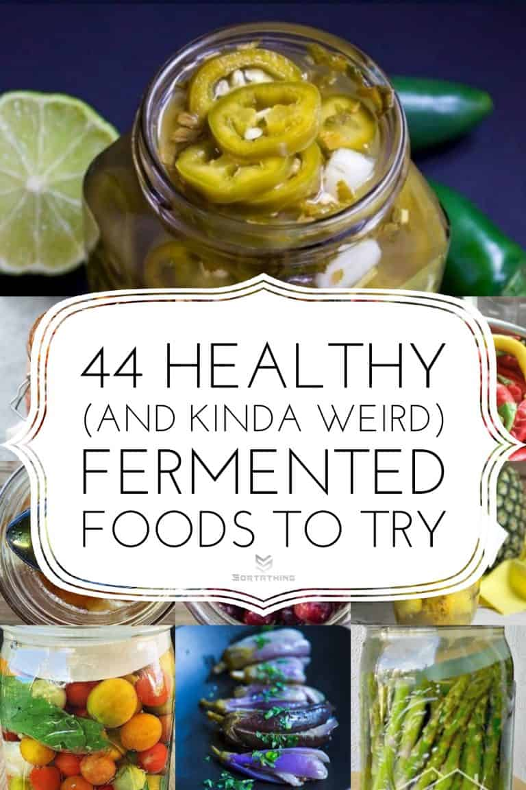 44 Fermented Foods Article Image