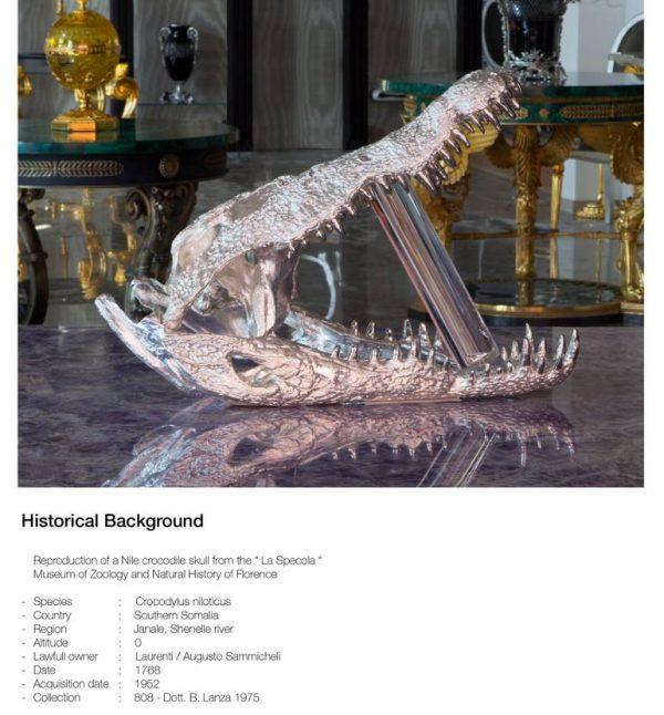 """Nile crocodile silver skull, nickel teeth"" - Original Artwork by Fabio Anfossi"