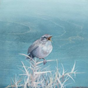 """Singing Wren"" - Open Edition Print by Lara Cobden"