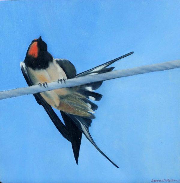 """Swallow l"" - Open Edition Print by Lara Cobden"