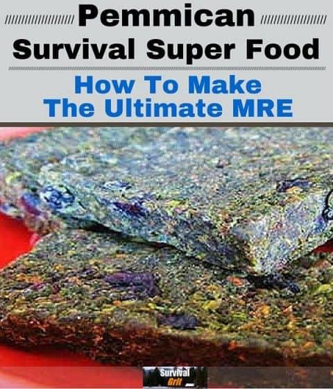 Pemmican Survival Super Food