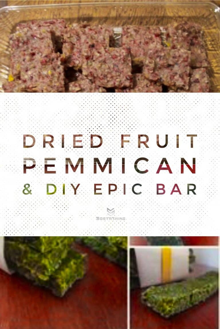 Dried fruit pemmican and DIY AIP Epic Bar