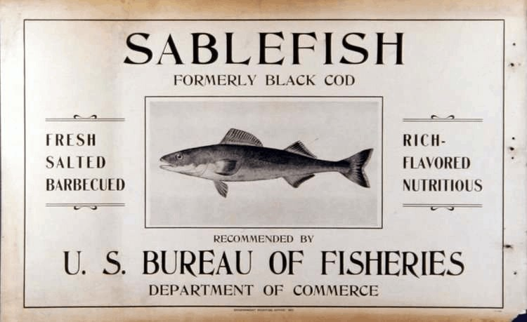 Sablefish formerly Black Cod